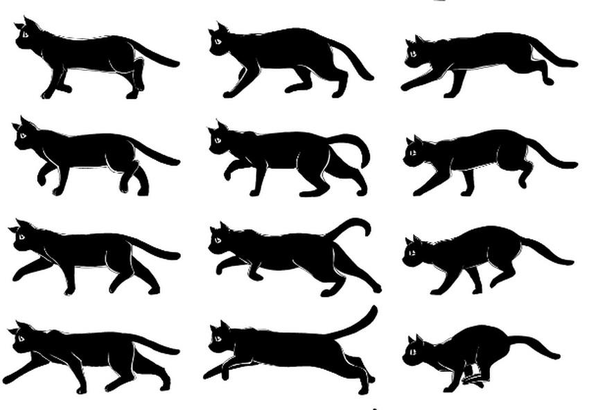 Анимация бегущей кошки
