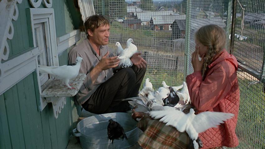 """""""Любовь и голуби"""" - кадр из фильма"""